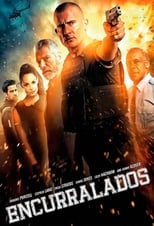 Encurralados (2015) Torrent Dublado e Legendado