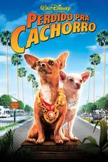 Perdido pra Cachorro (2008) Torrent Legendado