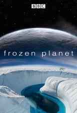 Poster Image for TV Show - Frozen Planet