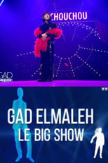 Spectacle Gad Elmaleh - Le Big Show streaming