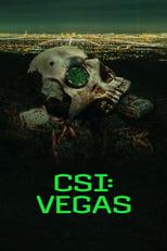 CSI: Vegas Image