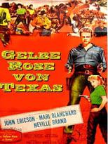 Gelbe Rose von Texas
