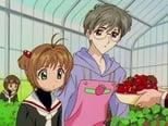 Sakura, Card Captor 2x3