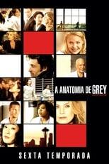 Anatomia de Grey 6ª Temporada Completa Torrent Dublada e Legendada