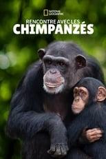 Rencontre avec les Chimpanzés Saison 1 Episode 2
