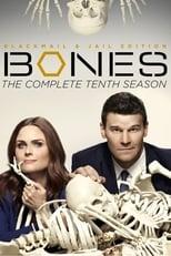 Bones 10ª Temporada Completa Torrent Legendada