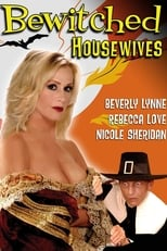 Image Bewitched Housewives