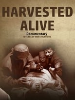 Harvested Alive - 10 Years of Investigations