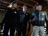 CSI: Investigação Criminal: 11 Temporada, Episódio 17