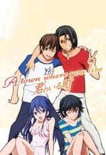 Poster anime Kimi no Iru MachiSub Indo