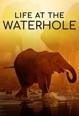 Life at the Waterhole Saison 1 Episode 1