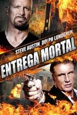 Entrega Mortal (2013) Torrent Dublado e Legendado
