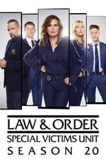Lei & Ordem Unidade de Vítimas Especiais 20ª Temporada Completa Torrent Dublada e Legendada