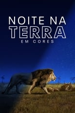 Earth at Night in Color 1ª Temporada Completa Torrent Legendada