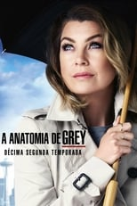 Anatomia de Grey 12ª Temporada Completa Torrent Dublada e Legendada