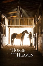 View A Horse from Heaven (2018) Movie poster on Ganool