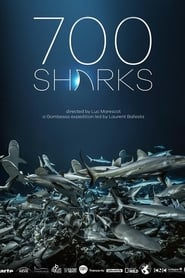 View 700 Sharks (2018) Movie poster on Ganool
