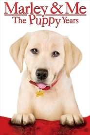 View Marley & Me: The Puppy Years (2011) Movie poster on Ganool