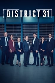 District 31 series tv