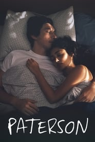 Poster Movie Paterson 2016