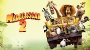 Madagascar 2 wallpaper
