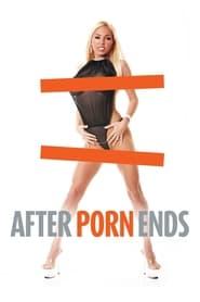 Cuando se acaba el porno (2012)