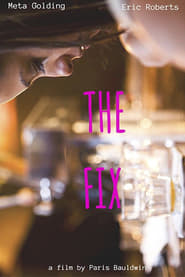 View The Fix (2015) Movie poster on Ganool