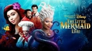 The Little Mermaid Live! wallpaper
