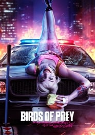 View Birds of Prey: Harley Quinn (2020) Movie poster on 123movies