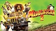 Madagascar 2 wallpaper