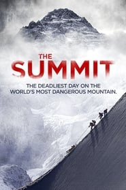 View The Summit (2012) Movie poster on cokeandpopcorn