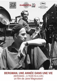 Bergman: A Year in a Life streaming