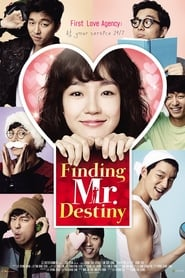View Finding Mr. Destiny (2010) Movie poster on 123movies