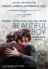 Beautiful boy, siempre serás mi hijo (2018)