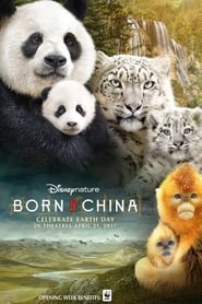 Poster Movie Born in China 2017