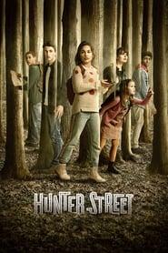 Serie streaming | voir Les Mystères d'Hunter Street en streaming | HD-serie