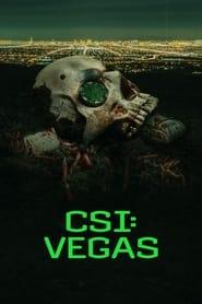 CSI: Vegas series tv