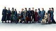 Les Animaux fantastiques : Les Crimes de Grindelwald wallpaper