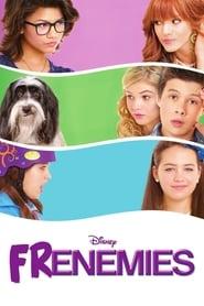 View Frenemies (2012) Movie poster on Ganool