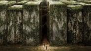 Le Labyrinthe wallpaper