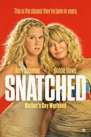 Poster Movie Snatched 2017