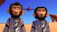 Les chimpanzés de l'espace wallpaper