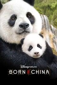 Nés en Chine  poster