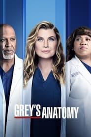 Grey's Anatomy TV shows