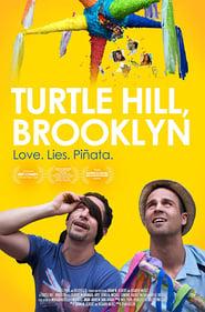 Turtle Hill, Brooklyn