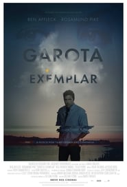Garota Exemplar (2014) Blu-Ray 1080p Download Torrent Dublado