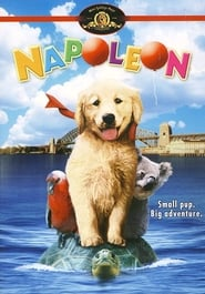 Napoleon : The Movie | Watch Movies Online