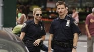Blue Bloods Season 5 Episode 4 : Excessive Force