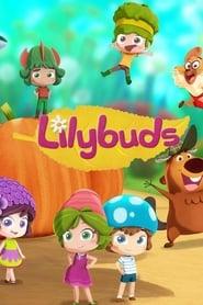 Lilybuds 2020