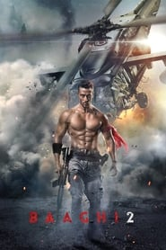 Baaghi 2 (2018) BluRay 480p, 720p